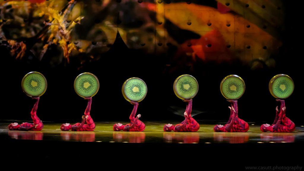Cirque du Soleil OVO Premiere